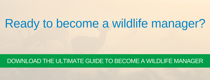 wildlife manager | work with animals