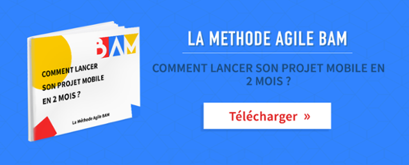 ebook methode agile bam