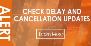 Check Delay and Cancellation Updates