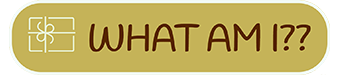 Who-Am-I-Araya-Homepage-Retail-Solutions