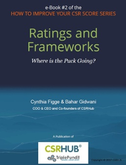 Ratings and Framesworks, book # 2 in the How to Improve Your CSR Score Series