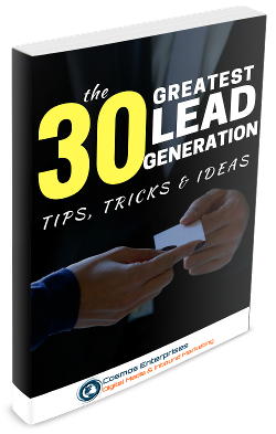 The 30 Greatest Lead Generation Tips, Tricks, Ideas ebook