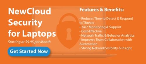 NewCloud Security for Laptops