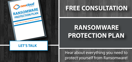 Hear about everything you need to protect yourself form ransomware using NewCloud's Ransomware Protection Plan. Let's talk. Schedule your free consultation!