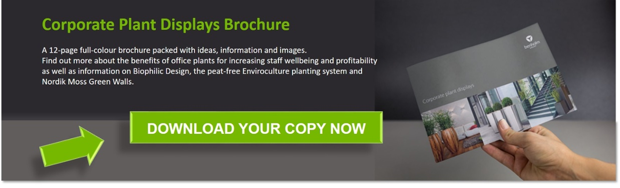 Click here to download the Benholm Group Corporate Plant Displays brochure