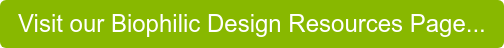 Visit our Biophilic Design Resources Page...
