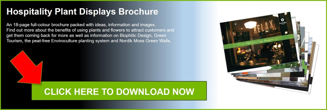 Click here to download the Benholm Group Hospitality Plant Displays brochure