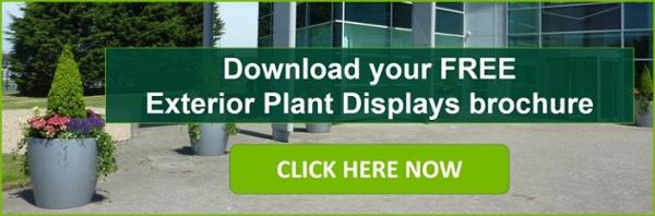 Exterior Plants Brochure CTA