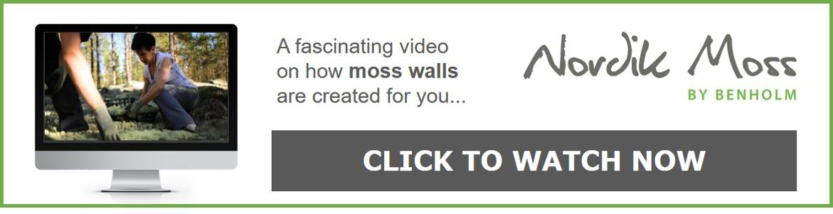 Click here to watch the fascinating Nordik Moss video