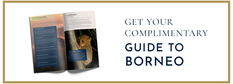 Guide to Borneo