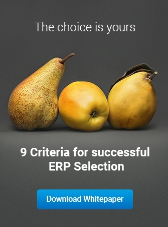 9 criteria for successful erp selection