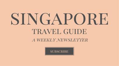 custom tour singapore