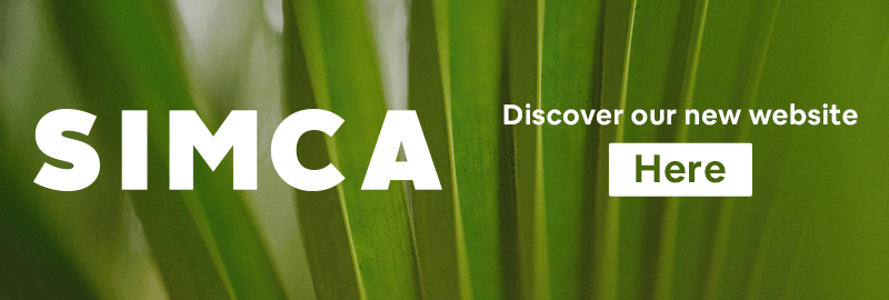 Discover our new website here