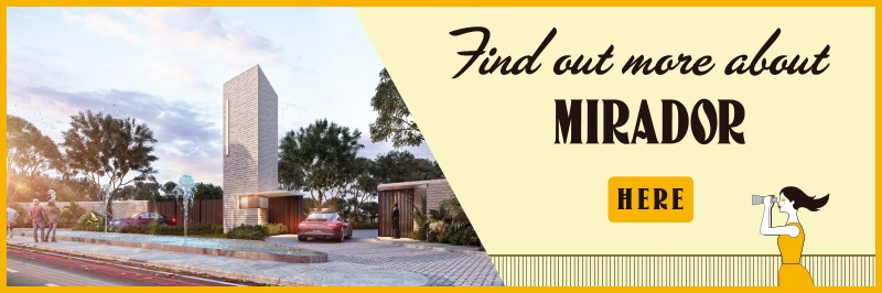 Find out more about Mirador here.