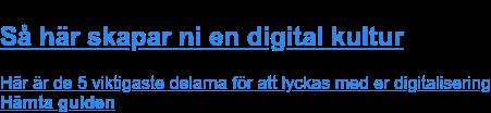 Rekommenderad guide:  Så här skapar ni en digital kultur  Här är de 5 viktigaste delarna för att lyckas med er digitalisering Hämta guiden