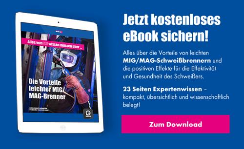 eBook Download Leichtgewichtbrenner