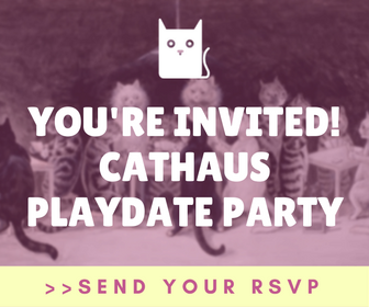 Sign-up for Cathaus Playdate Party