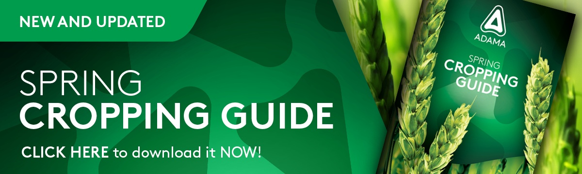 Spring Cropping Guide 2021
