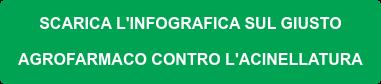 COME SCEGLIERE L'AGROFARMACO GIUSTO  PER L'ACINELLATURA Leggi la guida