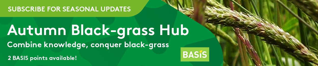 Subscribe to black-grass hub