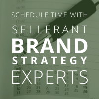 Schedule time with Sellerant Brand Strategy Experts