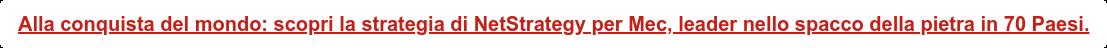 Alla conquista del mondo: scopri la strategia di NetStrategy per Mec, leader  nello spacco della pietra in 70 Paesi.