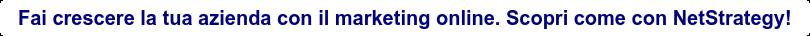 Fai crescere la tua azienda con il marketing online. Scopri come con  NetStrategy!