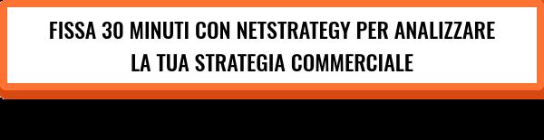 Migliora le performance del tuo Sales Team con NetStrategy