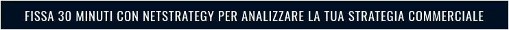 Fissa 30 minuti con NetStrategy per analizzare la tua strategia commerciale