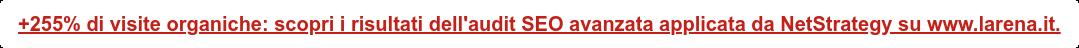 +255% di visite organiche: scopri i risultati dell'audit SEO avanzata applicata  da NetStrategy su www.larena.it.