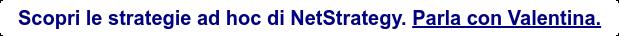 Scopri le strategie ad hoc di NetStrategy.