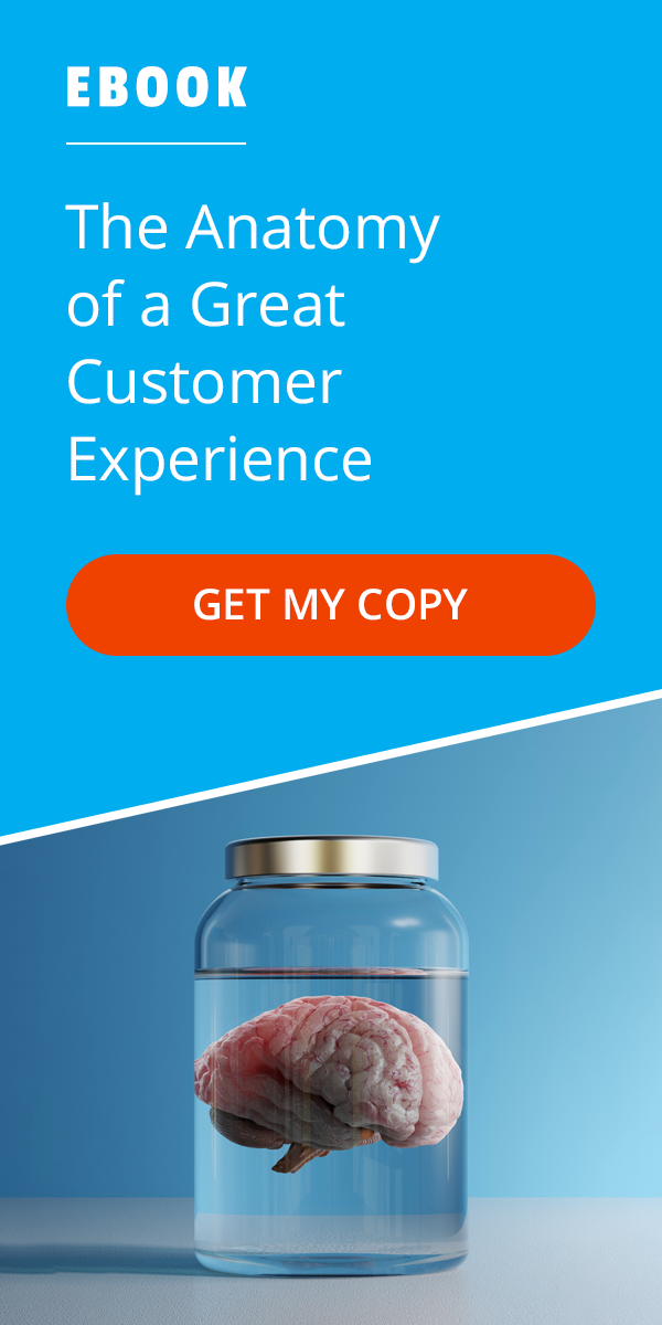 eBook: The Anatomy of a Great CX