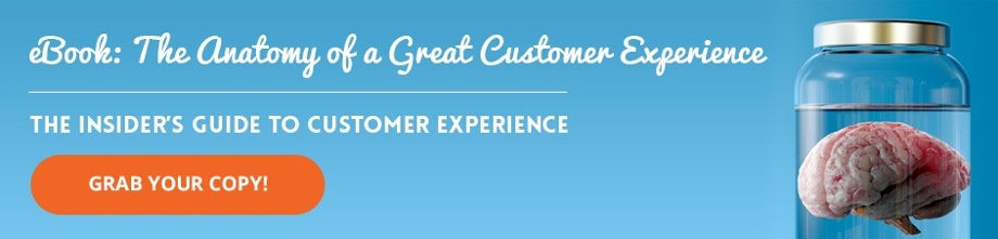 eBook: The Anatomy of a Great Customer Experience