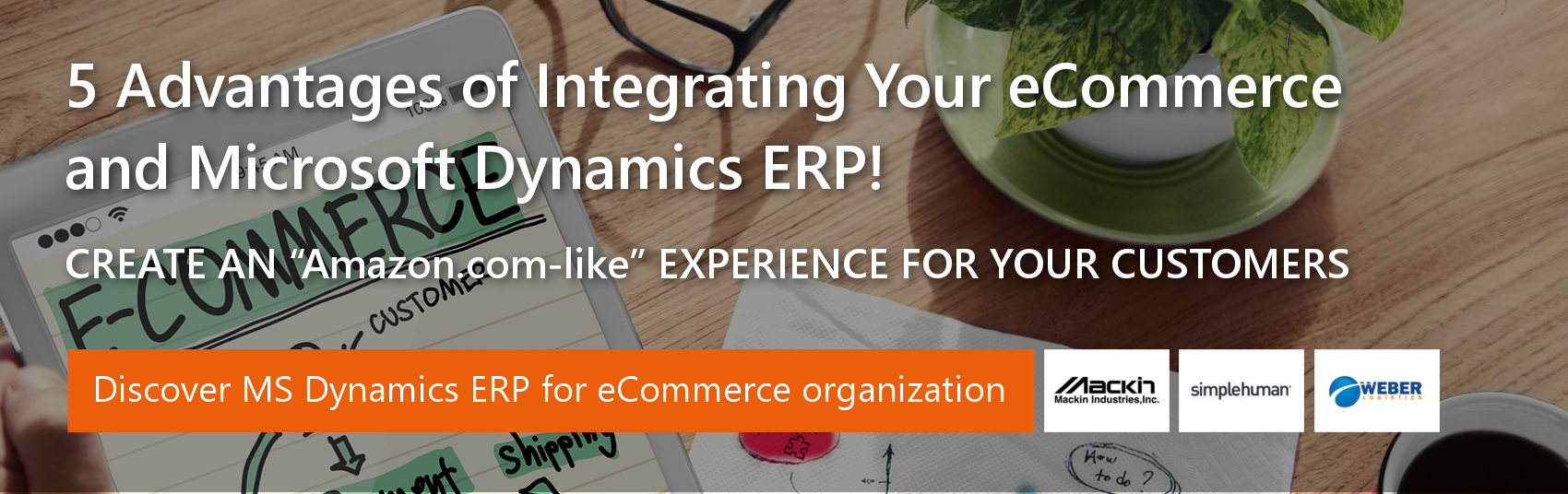 ERP for ecommerce Businesses