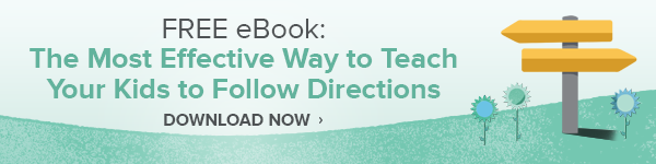 Giving Good Directions eBook