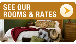 See Our Rooms and Rates
