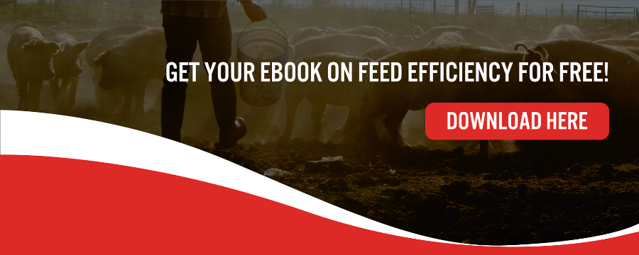 Get your eBook on Feed efficiency for free