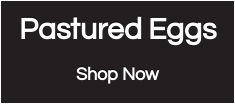 Pastured Eggs Shop Now