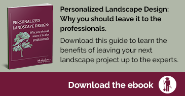 personalized landscape design guide