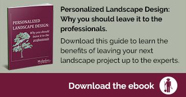 personalized landscape design guide