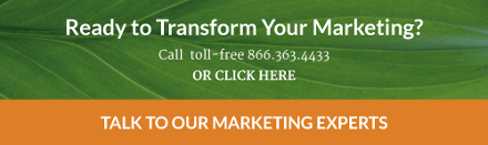 Ready to transform your marketing? Contact us