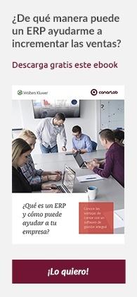 Ebook ERP
