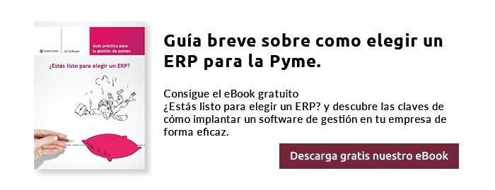Güía breve sobre cómo elegir un ERP para la Pyme