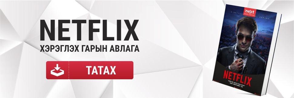 Netflix гарын авлага
