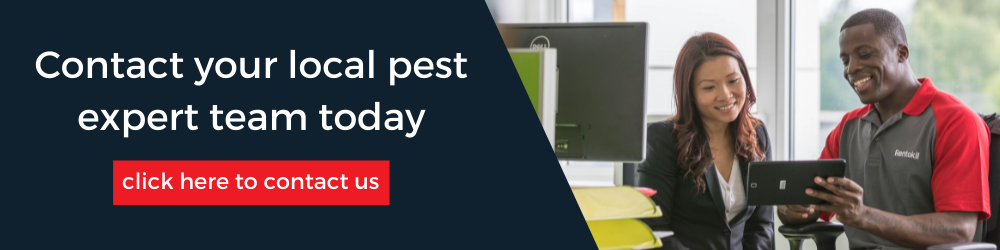 Contact your local pest expert team today