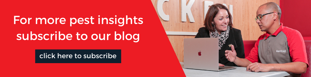 Subscribe to the Rentokil deBugged blog for regular pest insights
