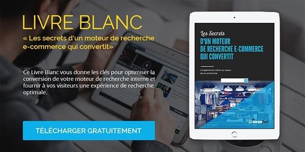 livre-blanc-moteur-recherche-ecommerce