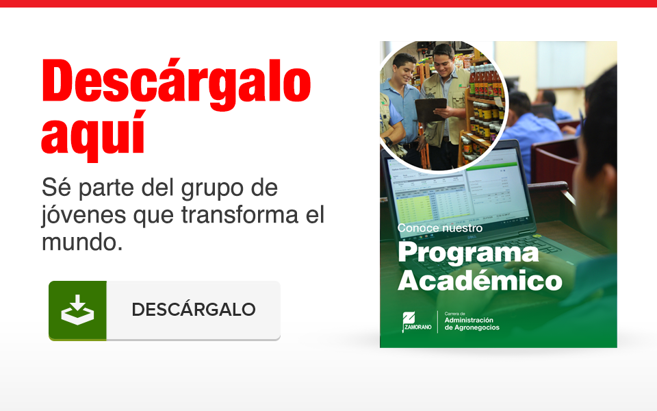 Capacidades Profesionales incluyen analizar el sector agrario empresarial, sectorial y macro