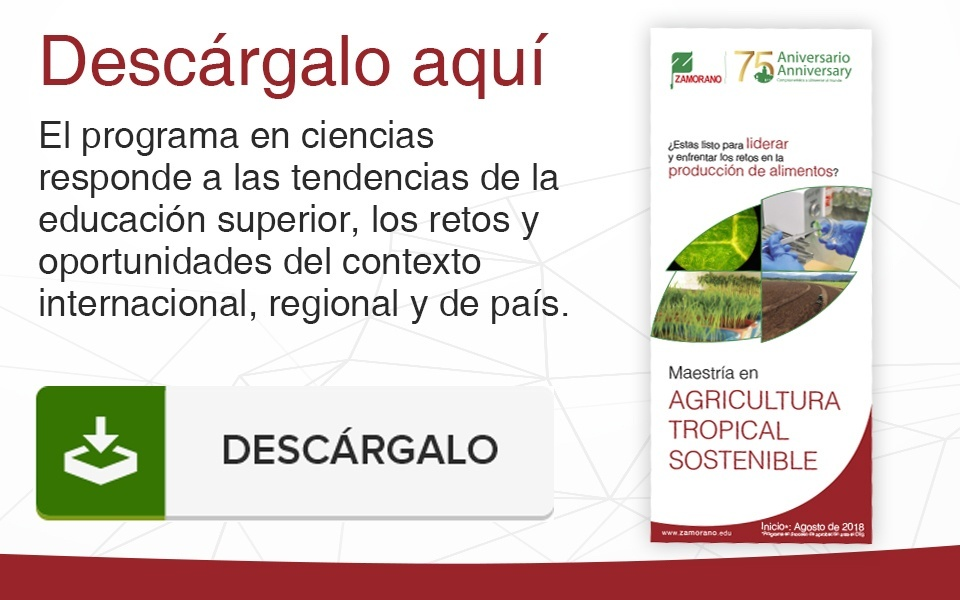 Descarga nuestro folleto sobre el programa de Tropical Agricultura Sostenible en Universidad Zamorano.