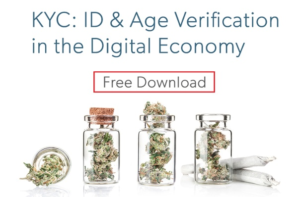free download KYC: ID & Age Verification in the Digital Economy
